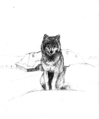 wölfchen